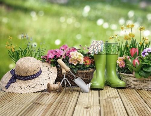 Garten- & Pflanzenzubehör